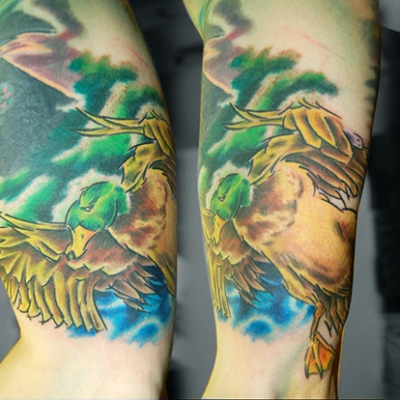 Neil's Mallard Tattoo